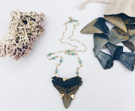 sharktooth_necklace