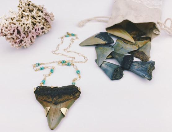 sharktooth_necklace2